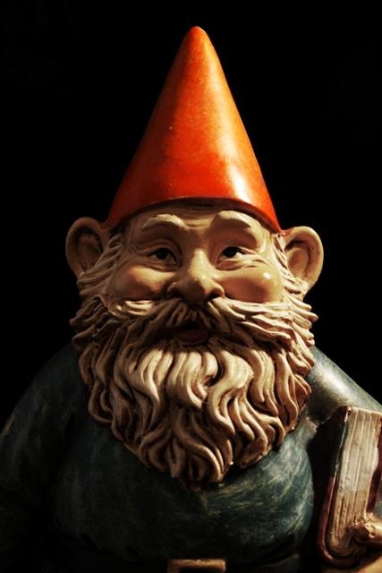 Gnome Portrait 1
