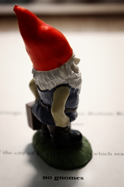 No Gnomes?