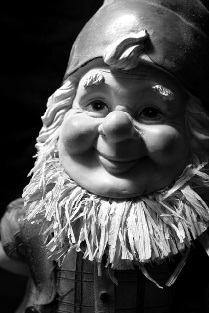 Gnome Portrait 3