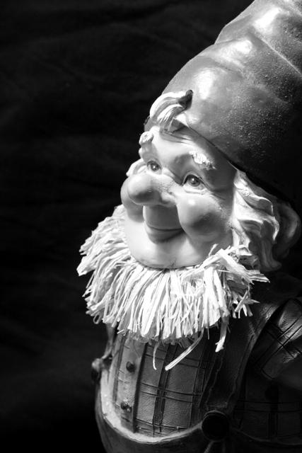 Gnome Portrait 2